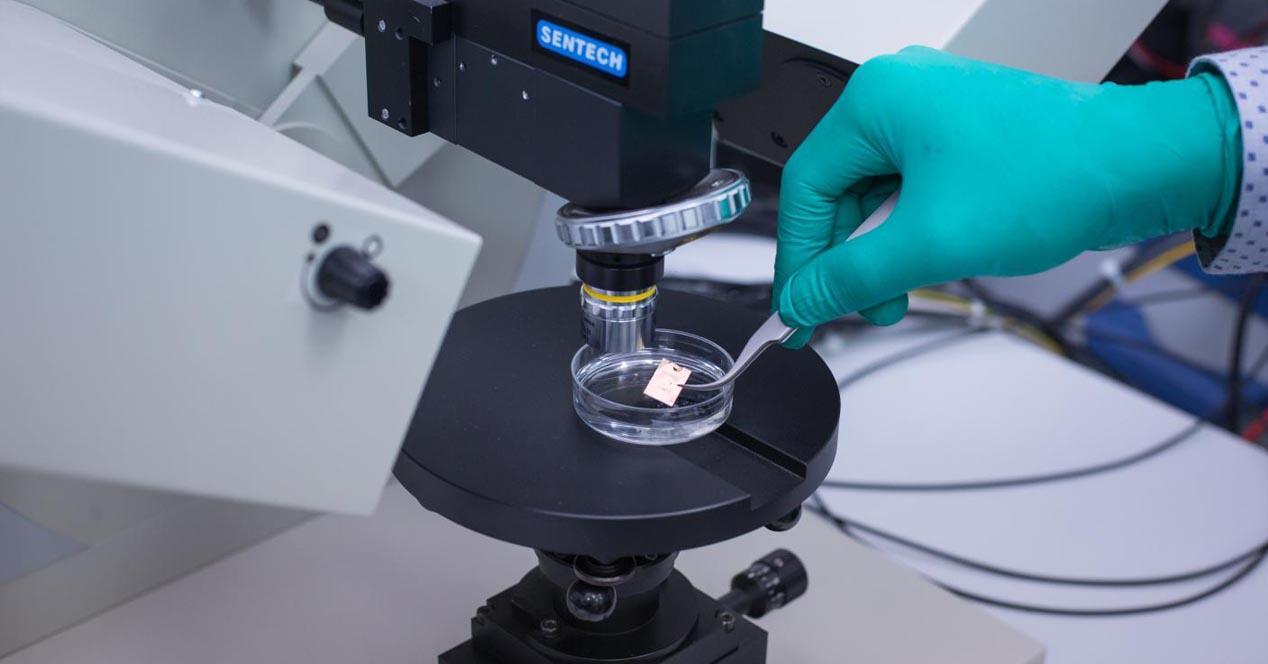 biosensor grafeno