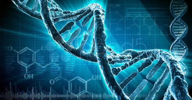malware en ADN