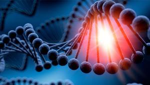 Microsoft logra almacenar 200 megas en ADN