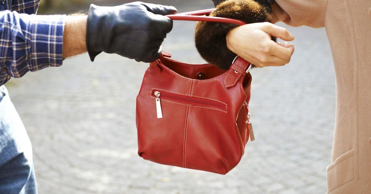 Robando el bolso