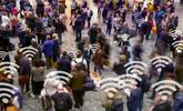 Descubren que es posible rastrear los móviles a través del WiFi en cualquier lugar