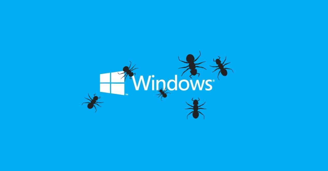 windows bug