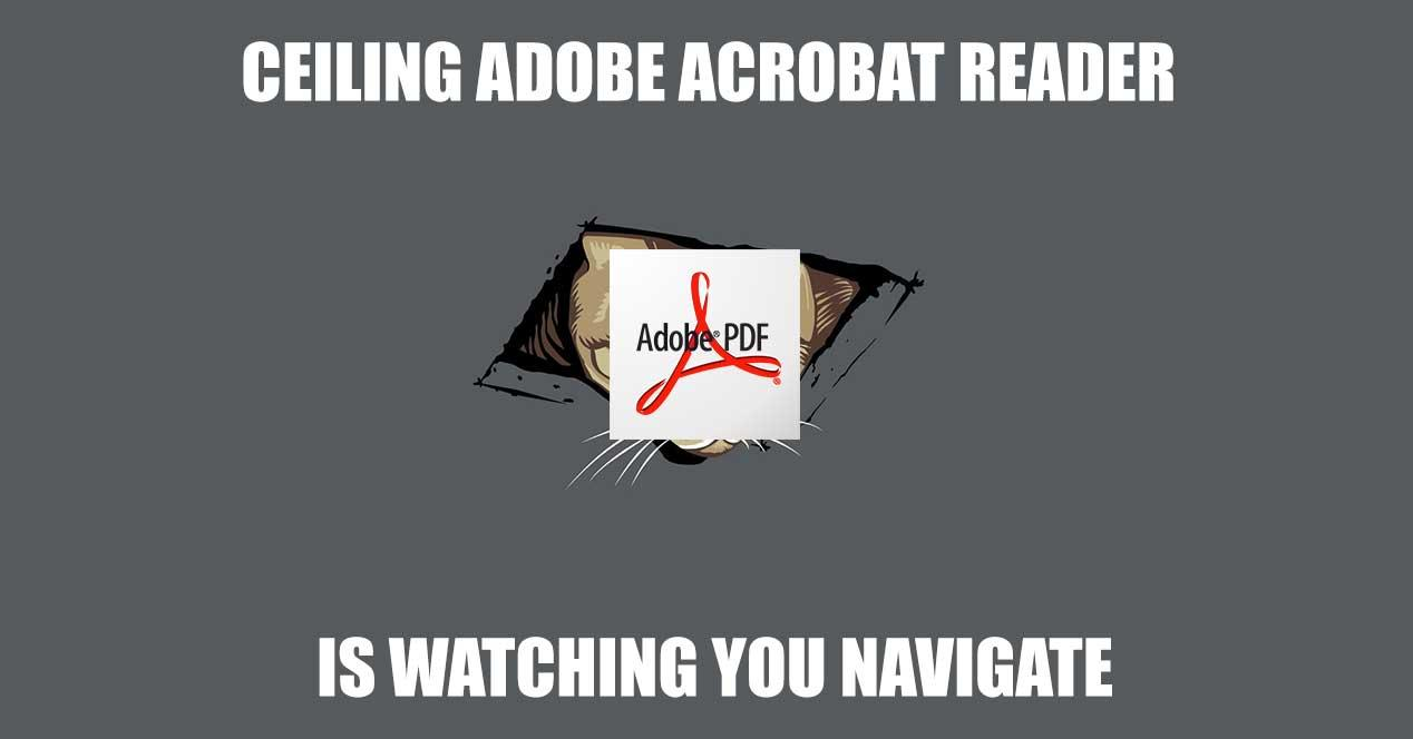 ceiling-adobe-acrobat-reader