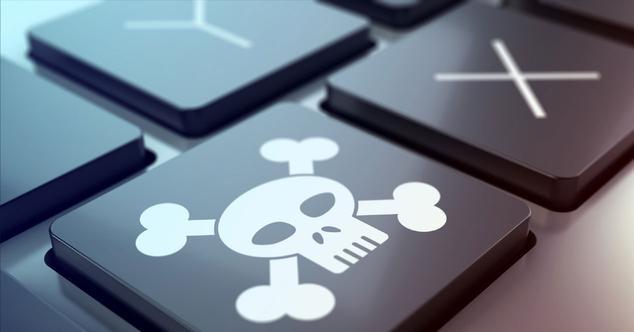 Bitnoop torrents