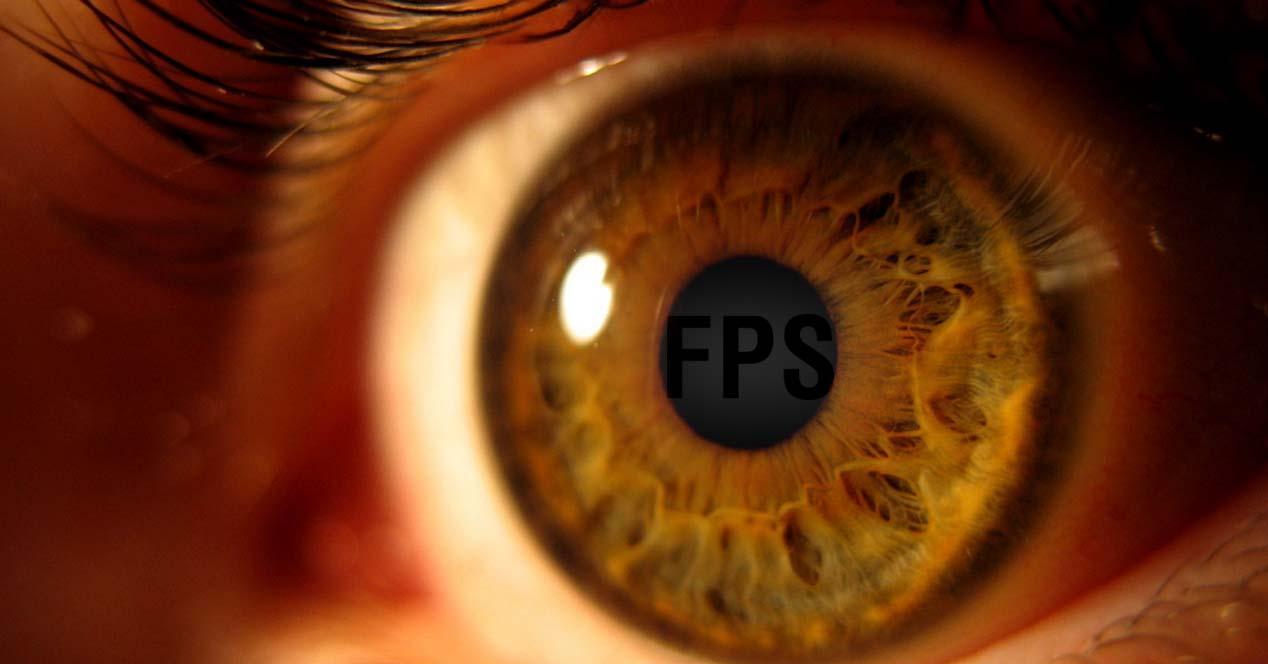 fps ojo humano