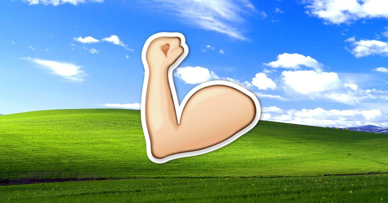 windows xp fuerte