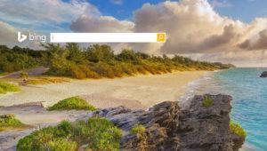 """Microsoft introduce la """"búsqueda inteligente"""" de imágenes en Bing y llega a España"""