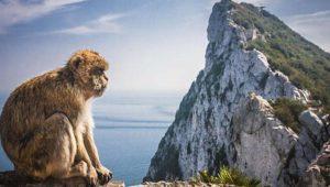 Mi experiencia tras el fin del roaming en Gibraltar