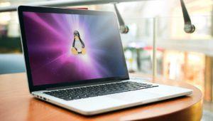 ¿Cuáles son las distros de Linux más utilizadas en 2017?