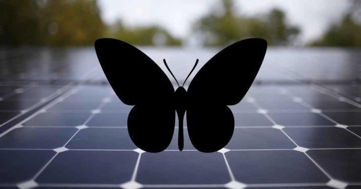 panel-solar-mariposa
