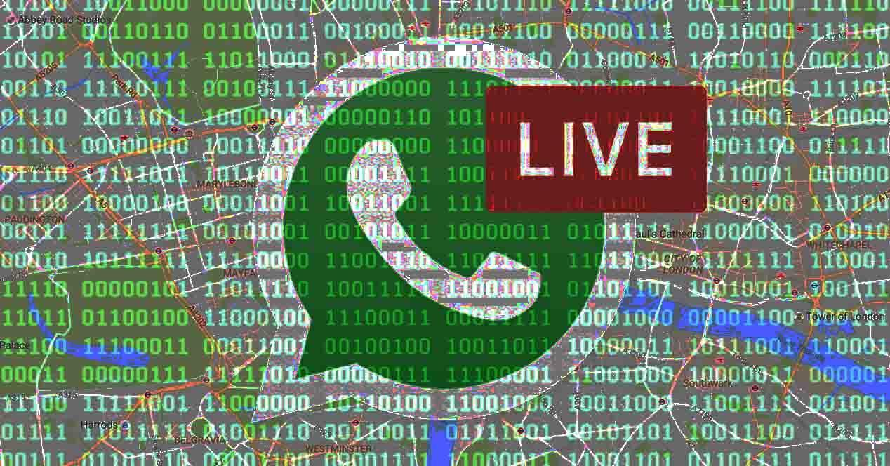 seguridad whatsapp live location