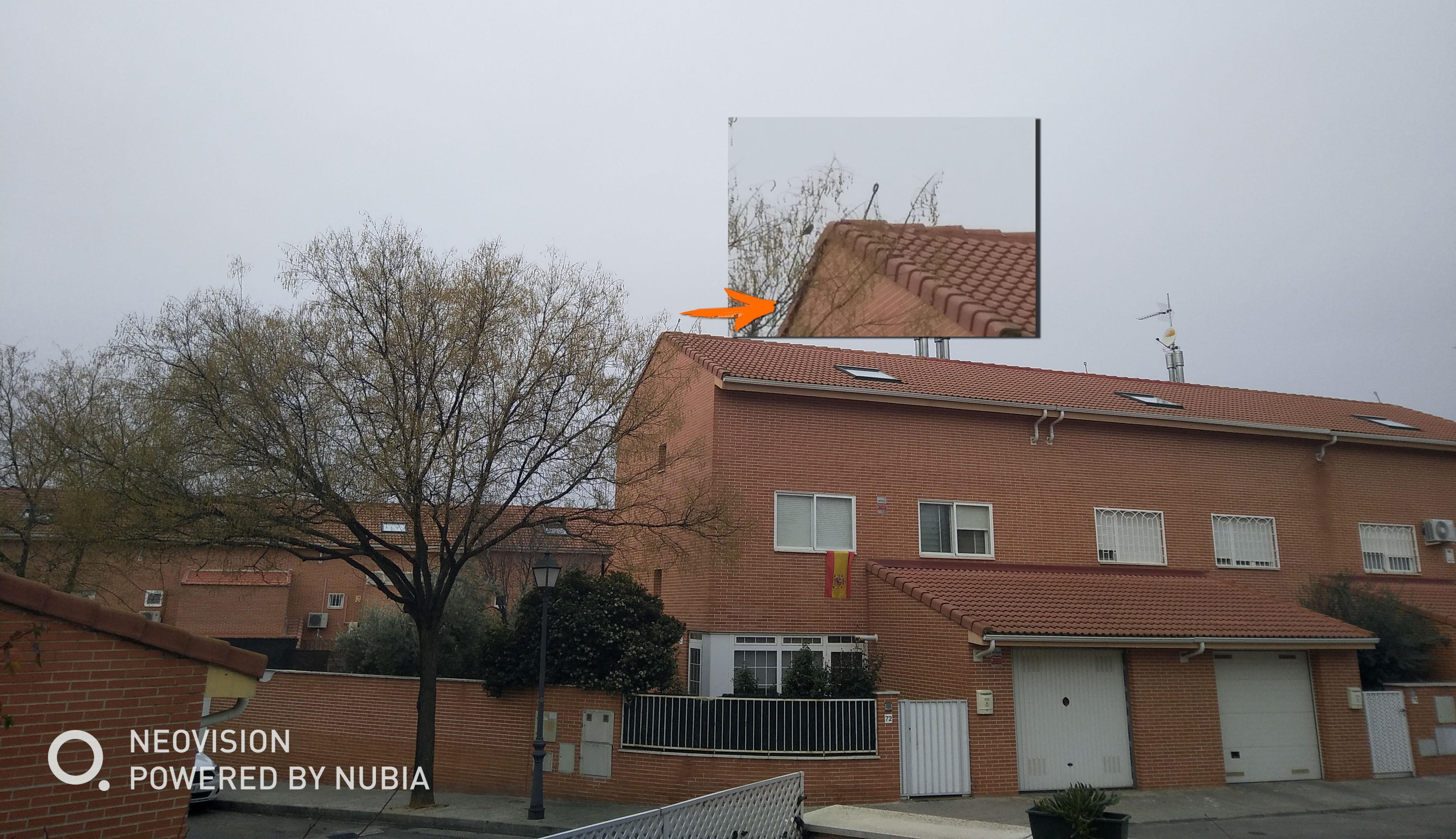 Zoom con la cámara del Nubia Z17 Lite