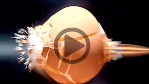 Cómo aplicar el efecto de cámara lenta a tus vídeos en Windows 10