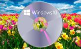Windows 10 Spring Creators Update: ya puedes descargar la ISO de Redstone 4