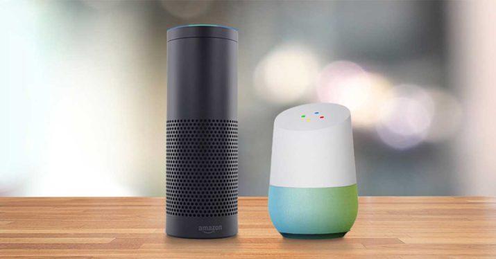 google home echo