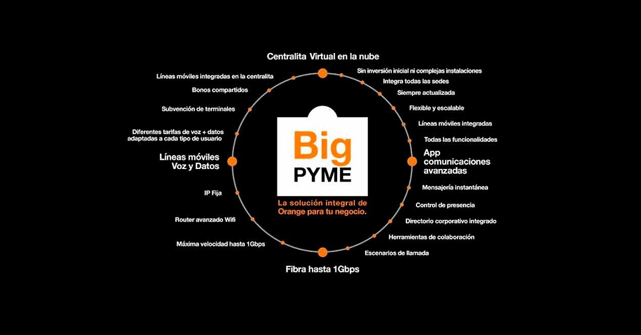 orange big pyme