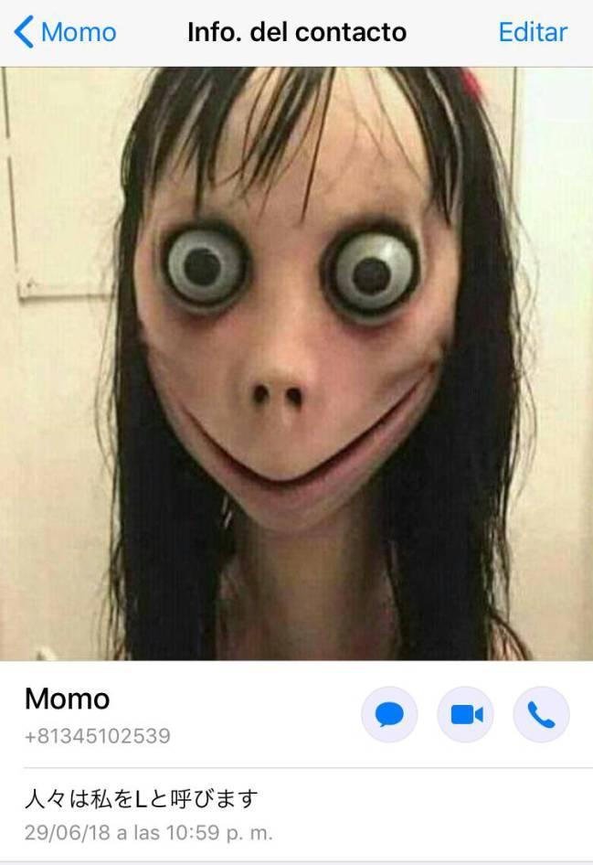 momo contacto