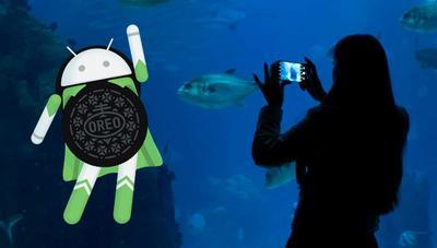 Android 8.1 Oreo y la Inteligencia Artificial: los mejores aliados en tu smartphone