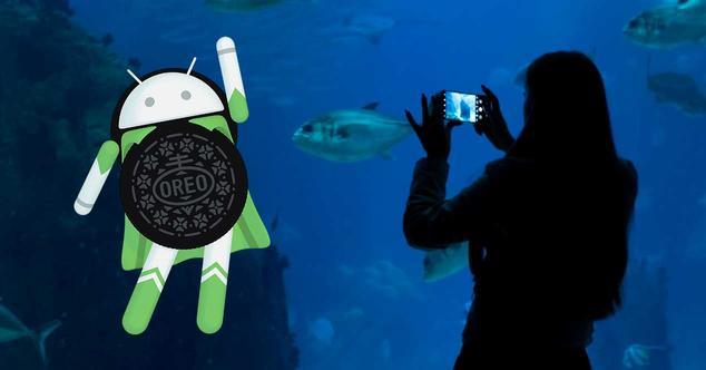 Ver noticia 'Android 8.1 Oreo y la Inteligencia Artificial: los mejores aliados en tu smartphone'