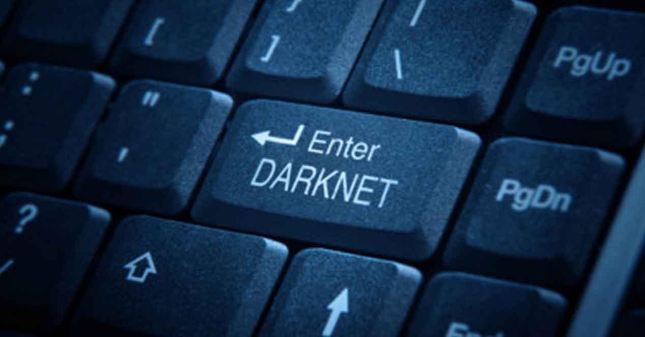 Ver noticia 'Noticia 'Un vendedor de la deep web, condenado a 20 años de prisión''