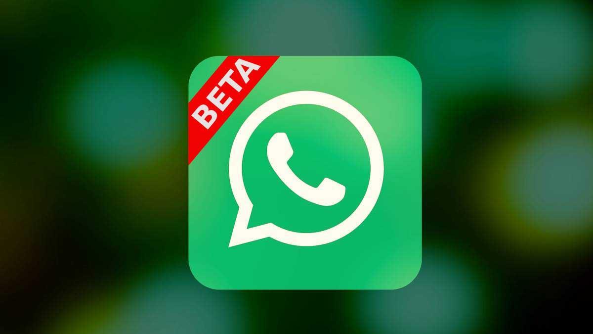 Ver noticia 'Noticia 'WhatsApp beta para iPhone ya disponible, cómo descargar''