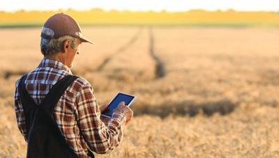 Microsoft sigue adelante con sus planes para ofrecer Internet en zonas rurales