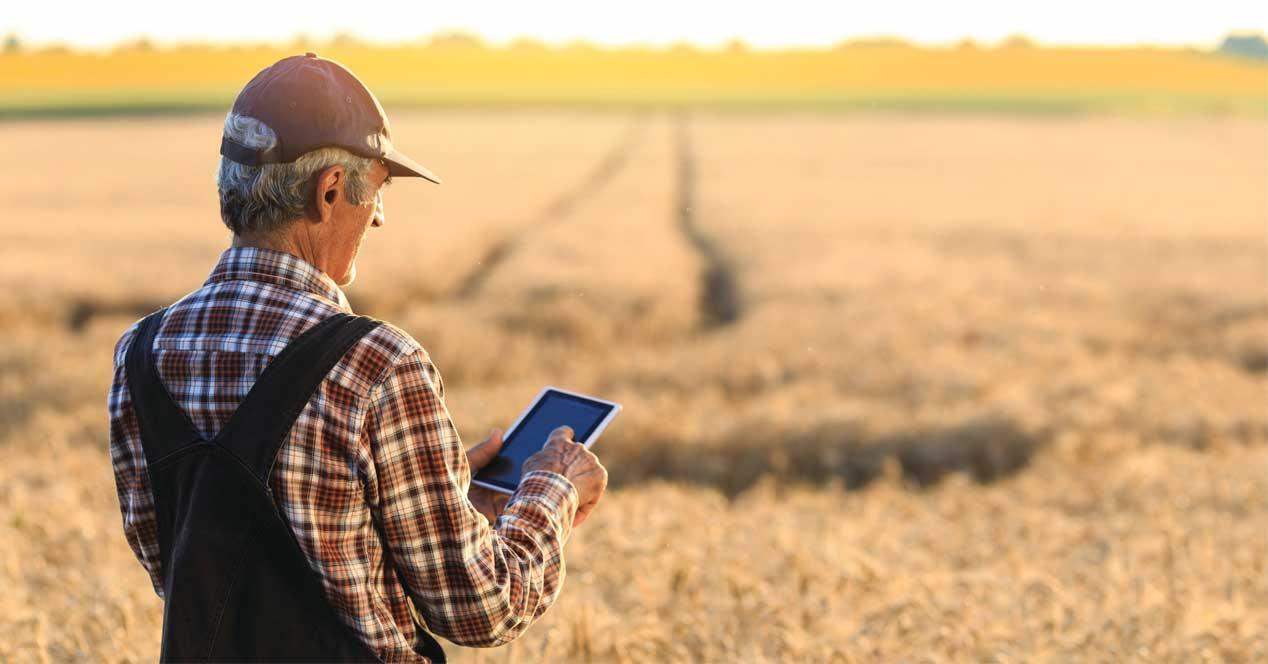 Ver noticia 'Noticia '¡Más fibra en zonas rurales! Aprobadas las ayudas para llevar allí el FTTH''