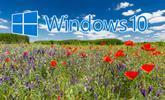Filtrado el nombre final de la primera gran actualización de Windows 10 de 2019