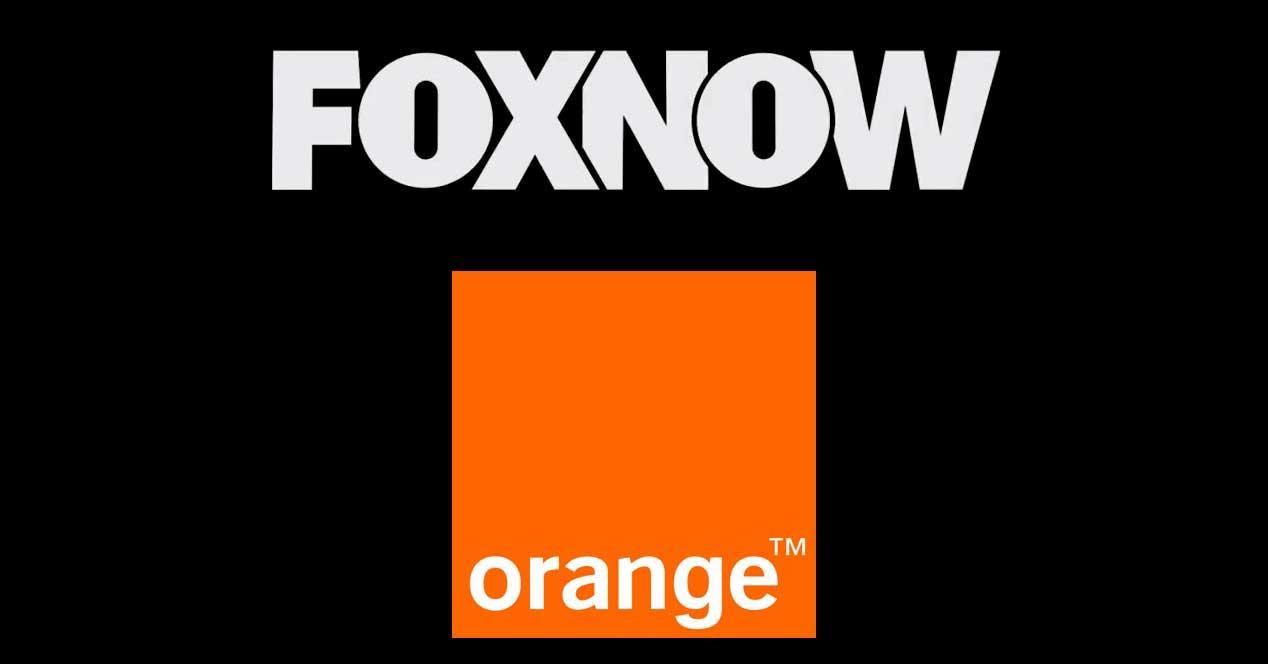 orange foxnow