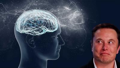 Neuralink: la empresa de Elon Musk ya está lista para meter chips en nuestros cerebros
