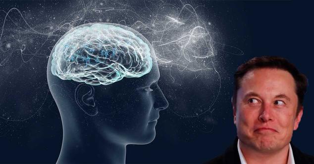 Ver noticia 'Neuralink: la empresa de Elon Musk ya está lista para meter chips en nuestros cerebros'