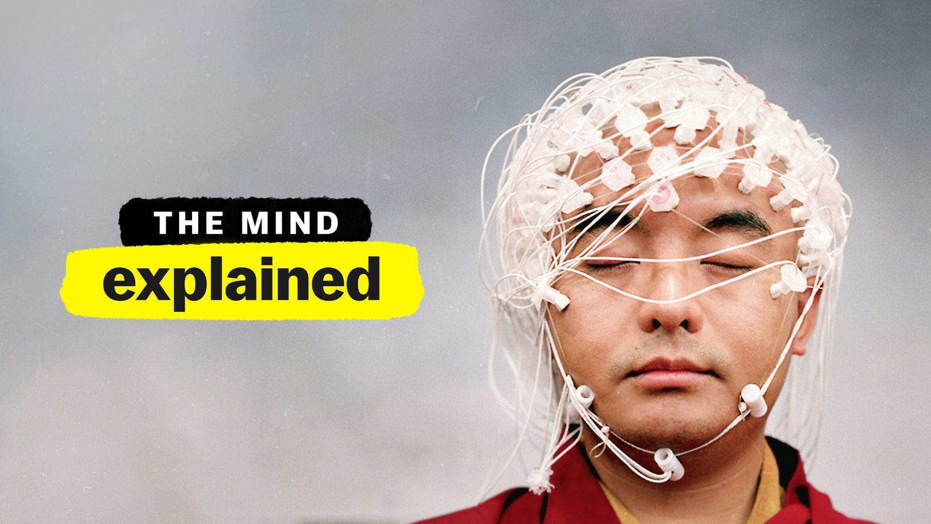 La mente en pocas palaras