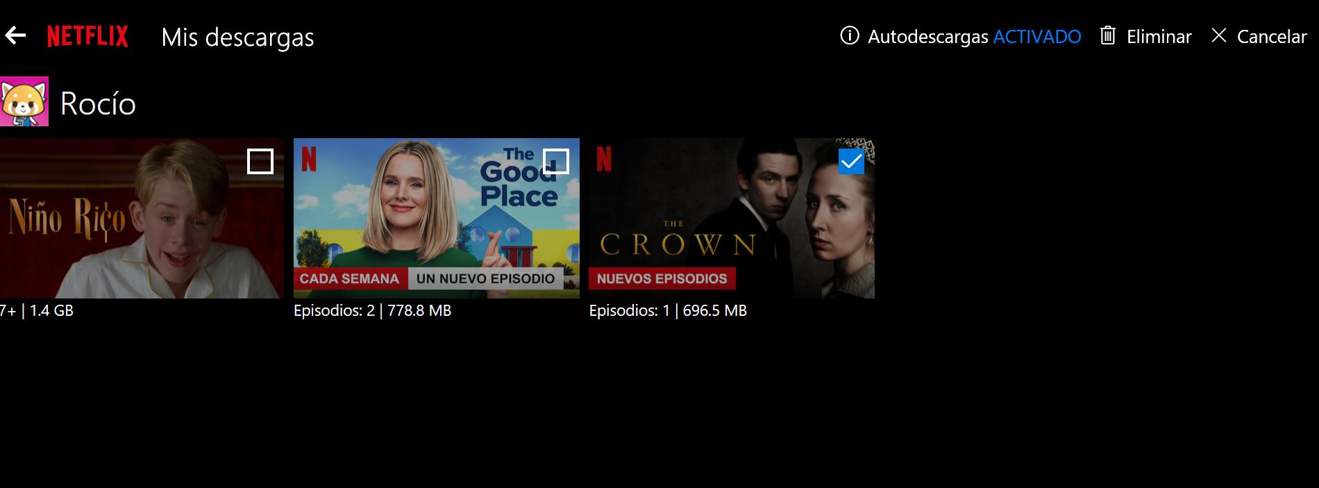 Descargas Netflix - Elminar