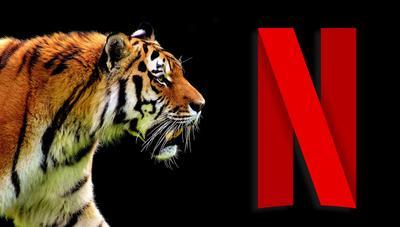 Los mejores documentales y series de naturaleza y animales en Netflix