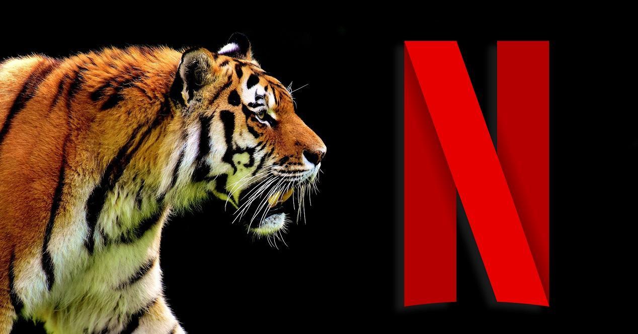 Ver noticia 'Ver Los mejores documentales y series de naturaleza y animales en Netflix'