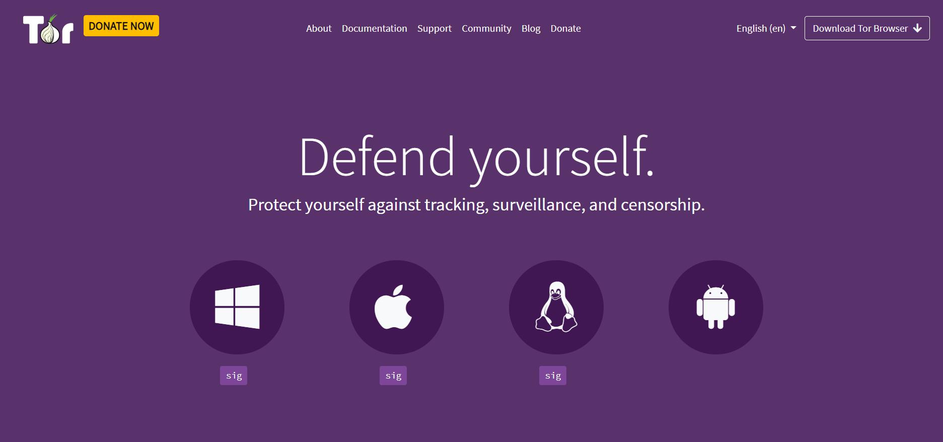 Tor descargar