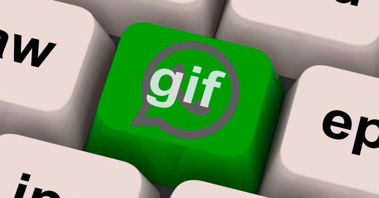 gifs whatsapp