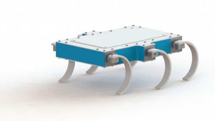 Robot cebra