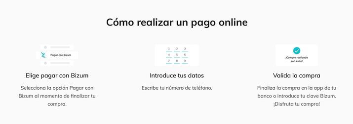 pasos para realizar un pago online con bizum