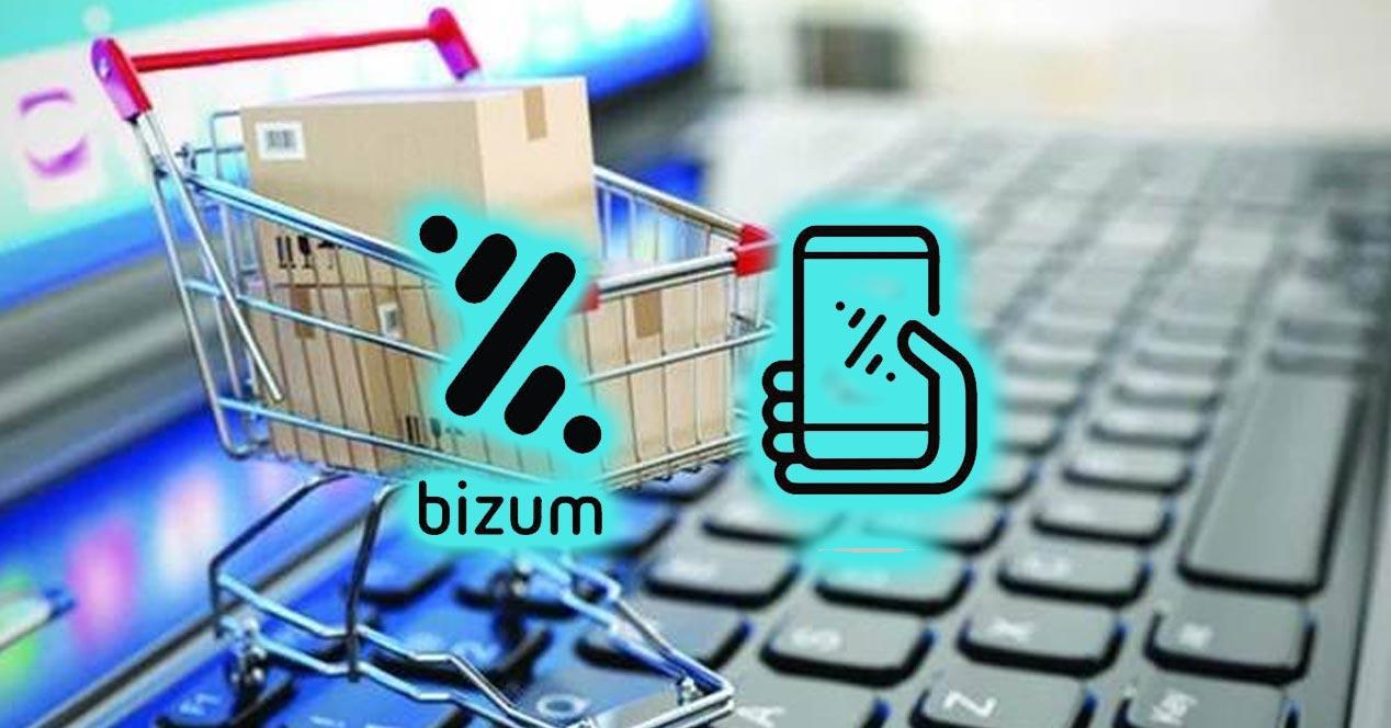 Bizum para pagar en comercios online